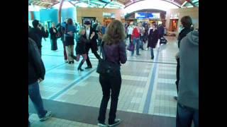 Travelling & Flash Mob Utrecht Centraal