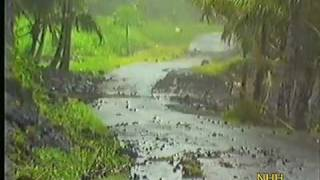 NH Hawaii: Hurricane Estelle 1986 Damage in Puna