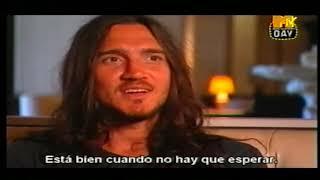 Red Hot Chili Peppers - Essential MTV | Interviews 1984-2007 (Subtitulado Español)