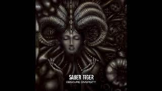 Band: Saber Tiger (from Sapporo, Hokkaido, Japan) Song: The Crowbar...