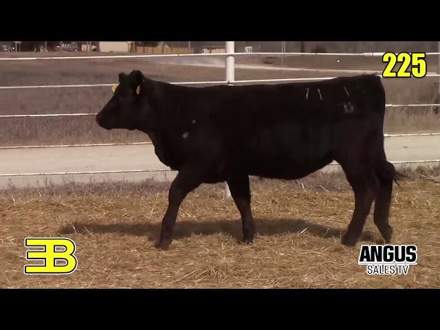 Benoit Angus Lots 224 - 226