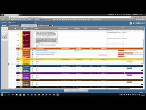 smartsheet-solution---team-&-project-reporting-template