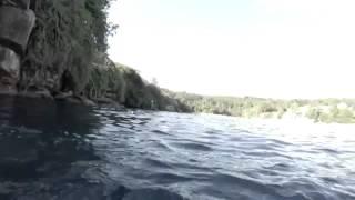Неожиданная встреча с акулой после прыжка со скалы...