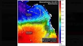 Fukushima Radiation Hits West Coast- Dying Oceans pt2
