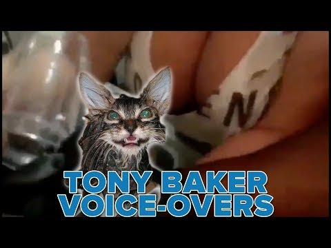OFFICIAL Tony Baker Voice Over Compilation - Wet Cats!