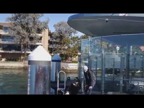Sydney's Parramatta River cruise
