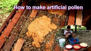 How to make artificial pollen   Feed the bees with artificial pollen