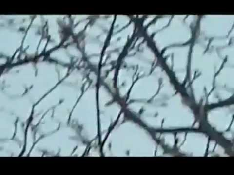 Phil Kieran & Jochem Paap - Paint And Chemicals Dept. [Dub] - Electric DEluxe