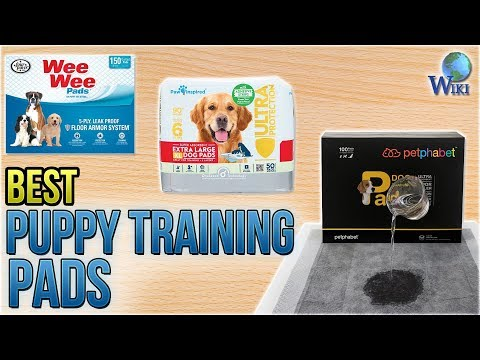 10 Best Puppy Training Pads 2018