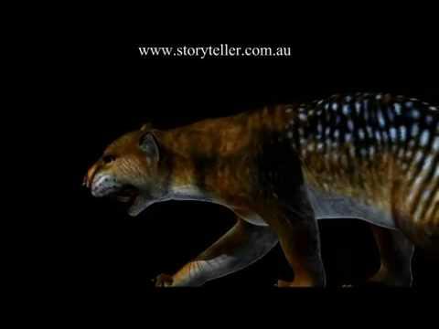 Thylacoleo carnifex the marsupial lion