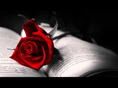 Love Story by Anthony Ventura