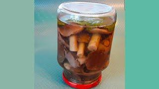 Маринованные белые грибы на зиму. Рецепт маринада для грибов