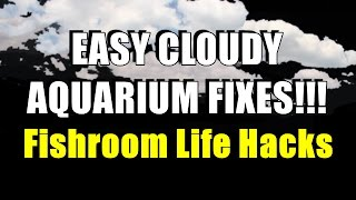 Easy Cloudy Aquarium Fixes!! | Fishroom Life Hacks