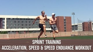 sprint training workout for acceleration speed speed endurance plus a note on reductionism