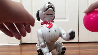 Baymax the Aibo Learned New Tricks!