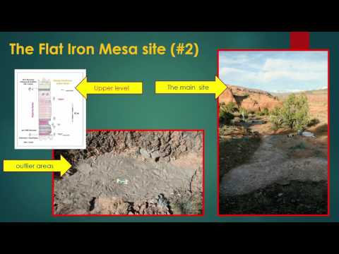 Large tracksites in the Glen Canyon Group near Moab, Utah — Martin Lockley