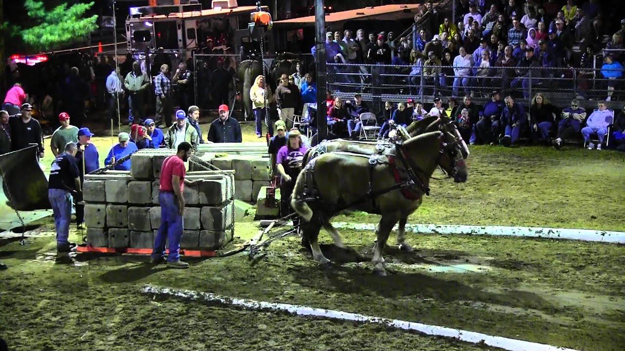 Download Draft Horse Pull 2013 Deerfield Fair NH Pulling Video 57