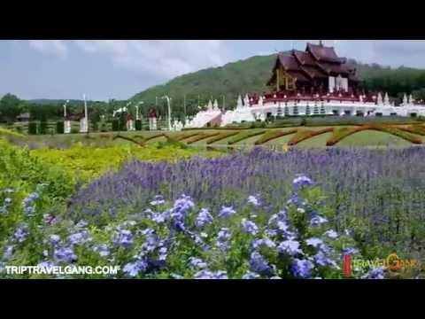 สวนดอกไม้ที่สวยที่สุดในเมืองไทย อุทยานหลวงราชพฤกษ์ อ. เมือง จ. เชียงใหม่- สถานที่ท่องเที่ยวเชียงใหม่