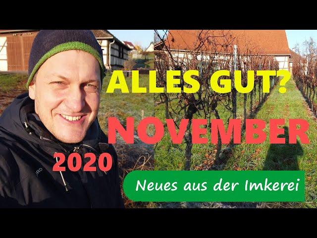 Alles gut am Bienenstand? Überlegungen November 2020 - Neues aus der Imkerei