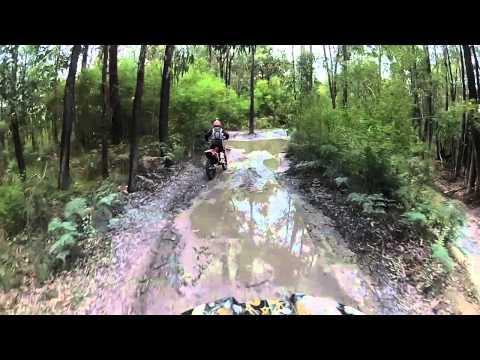 Trailriding Neerim Victoria Australia
