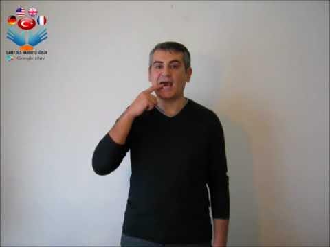 Demir - işaret dili