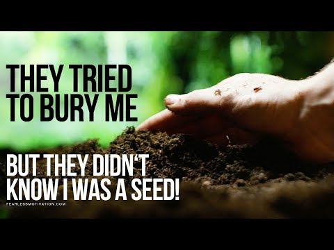 They Tried To Bury Me... But They Didn't Know I Was A SEED!