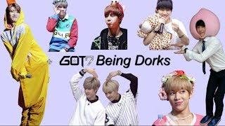 Got7 Being Dorks