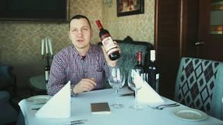 Всеволод Топонаров. Ответы на вопросы подписчиков. Вино ШИША.