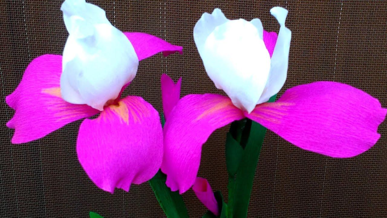 How To Make Paper Flowers Iris Flower 128 Youtube