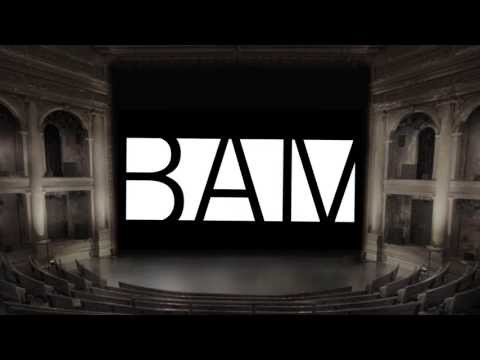 The BAM Harvey Theater: now Brooklyn's largest movie palace.