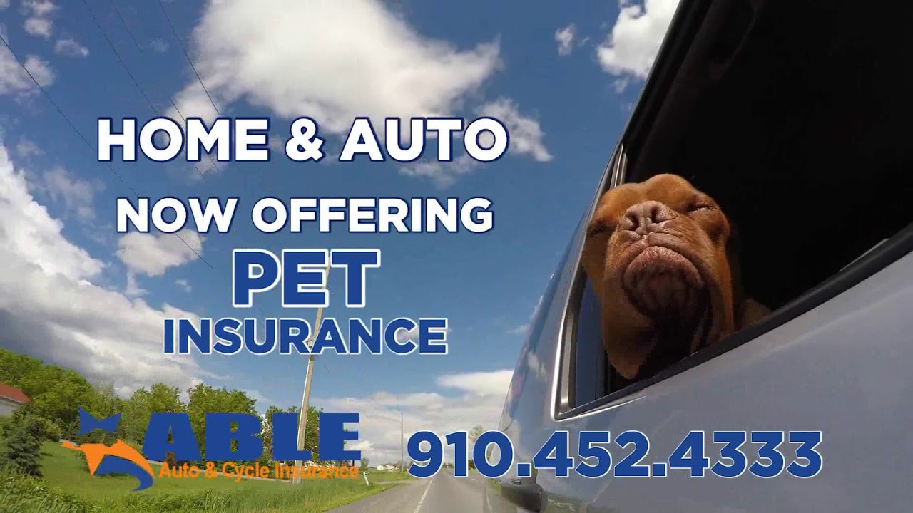 Able Auto Insurance >> Save On Your Insurance Today With Able Auto Insurance