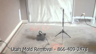Air Sampling with Air Scrubber - Utah Mold Removal