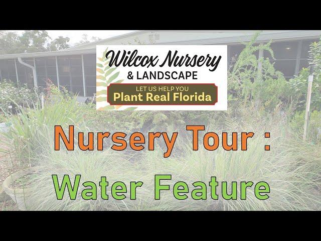 Nursery Tour Tuesday- Fountain Area!