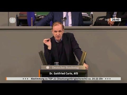 Die Fraktionen der Inländerfeinde - 28.05.2020 Gottfried Curio AfD - Bananenrepublik