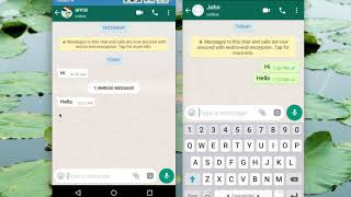 How to Read WhatsApp Messages without Blue Tick Marks