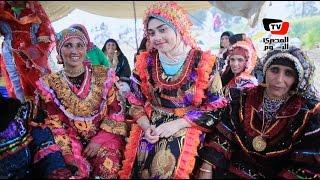 أفراح قبيلة «الدواغرة» تدوِّن تاريخ البدو في مصر