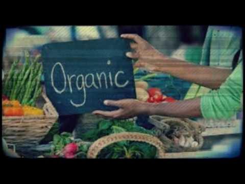 43 - Organic Food