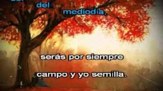 Amada mia   Jose Luis Perales