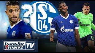 Drei Spieler vor Absprung? Schalker Offensive im Check 🔵⚪️ | TRANSFERMARKT