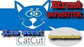 RuCaptcha заработок без вложений 100-200 рублей за пару часов с рефералами до 1000 рублей.