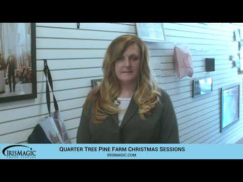 Christmas Trees   Quarter Tree Pine Farm Family Sessions   IrisMagic Photo Studios