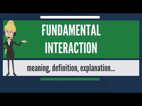 What is FUNDAMENTAL INTERACTION? What does FUNDAMENTAL INTERACTION mean?