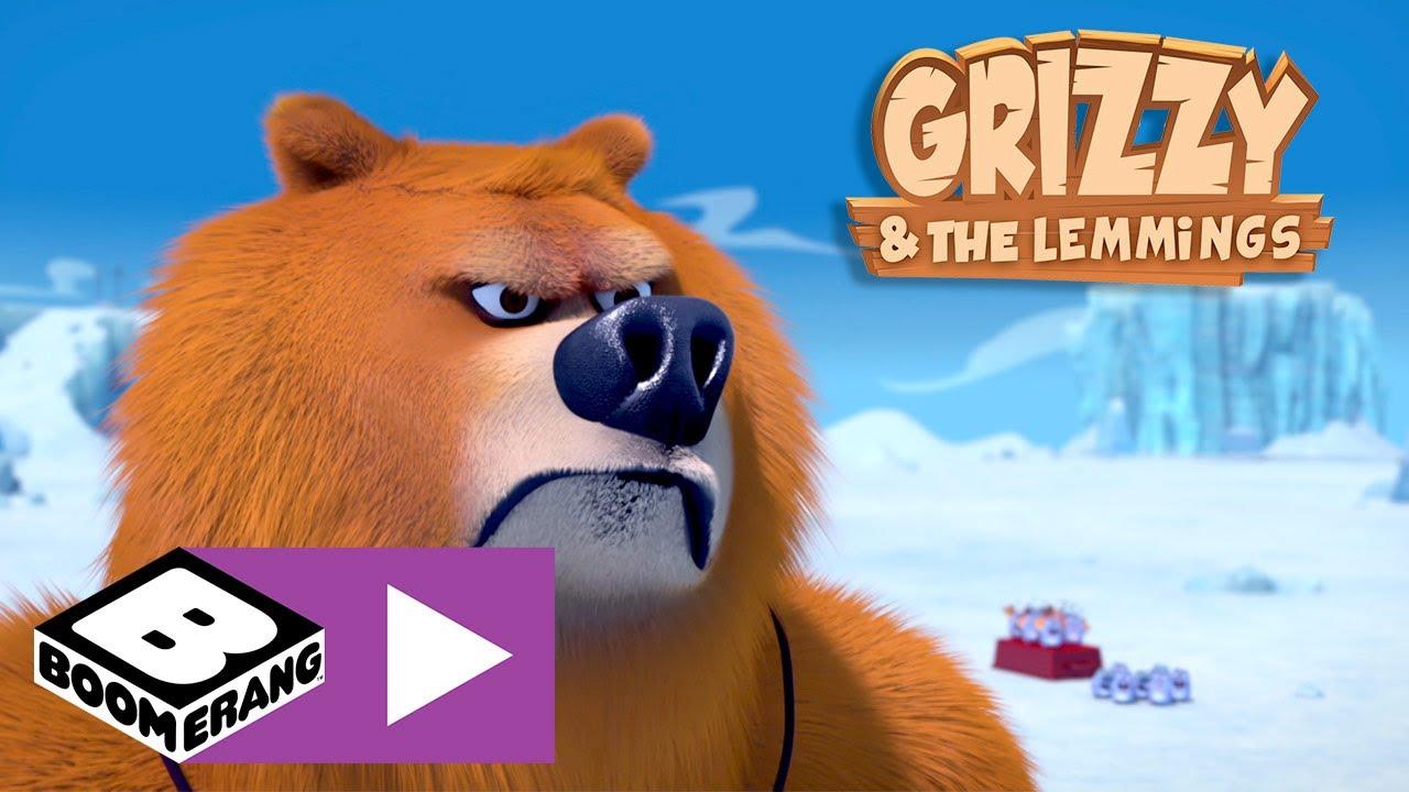 Grizzy i lemingi | Antarktyka | Boomerang