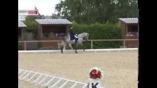 Этап Кубка мира по конному спорту