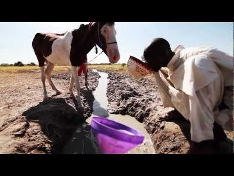 Water For Life: Bringing Clean Water to Thousands