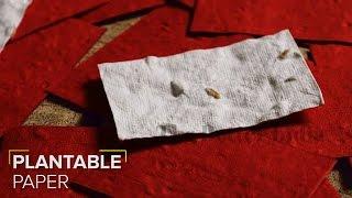 Plantable Paper