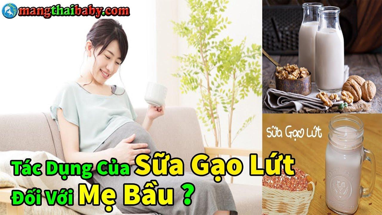 ✅ Tác Dụng Của Sữa Gạo Lứt Đối Với Mẹ Bầu | Mang Thai Nên Uống Gì ?