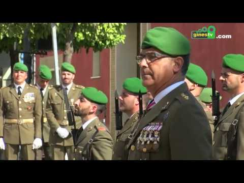Jura de Bandera de personal civil en Gines (COMPLETO)