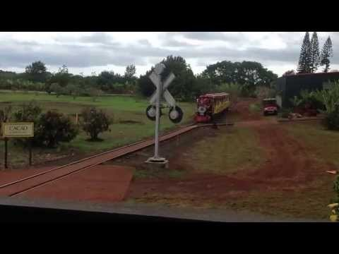 RIDING A TRAIN AT DOLE  PLANTATION IN HAWAII