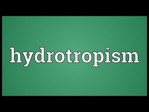 Header of hydrotropism